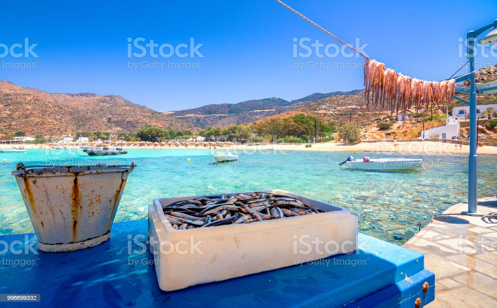 Traditional Greek Sea Food Octopus Drying In The Sun
