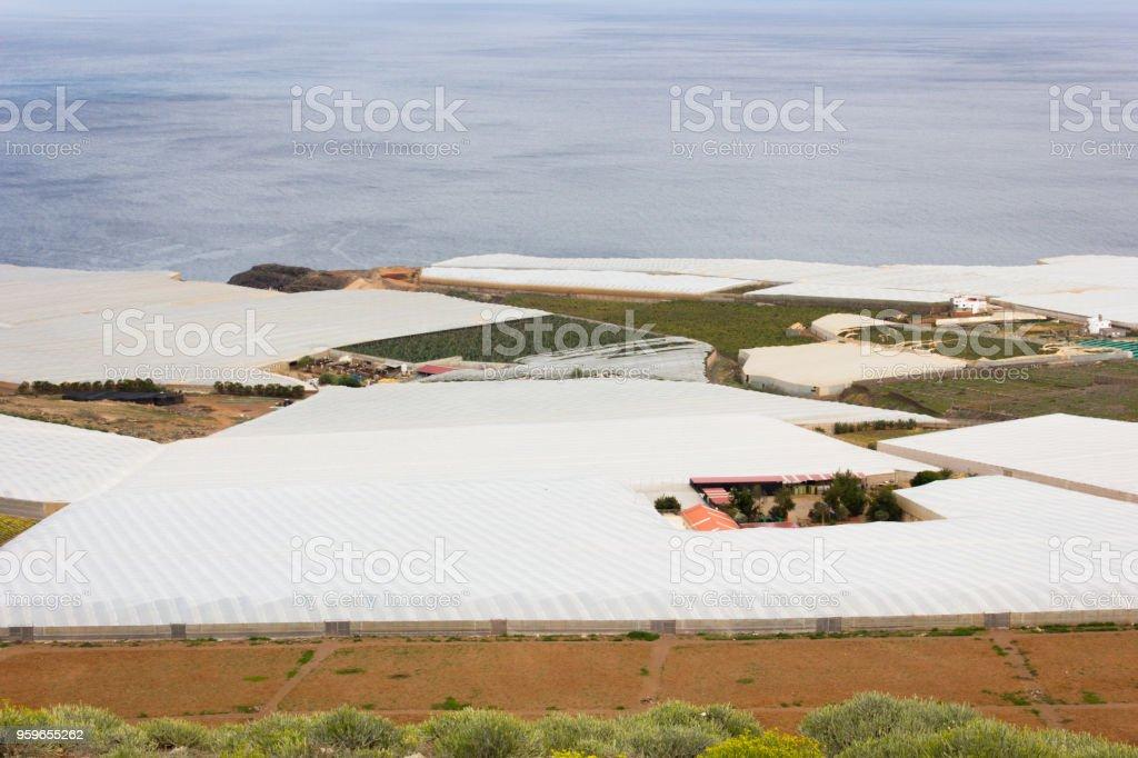 Invernaderos tradicionales junto al mar en el norte de Gran Canaria, España - Foto de stock de Agua libre de derechos