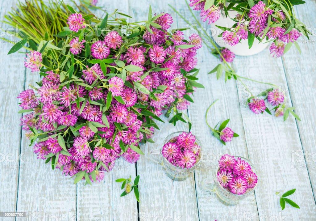 Traditionnelle A Base De Plantes The De Trefle Rouge Fleurs Fleur De