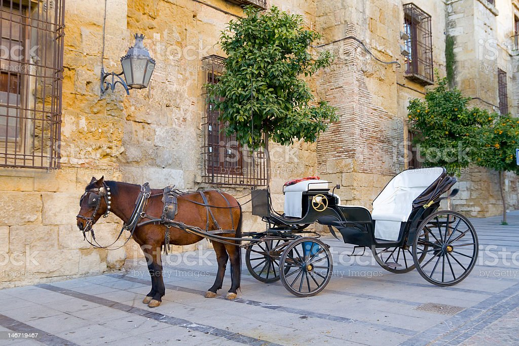 Traditional Horse and Cart stock photo