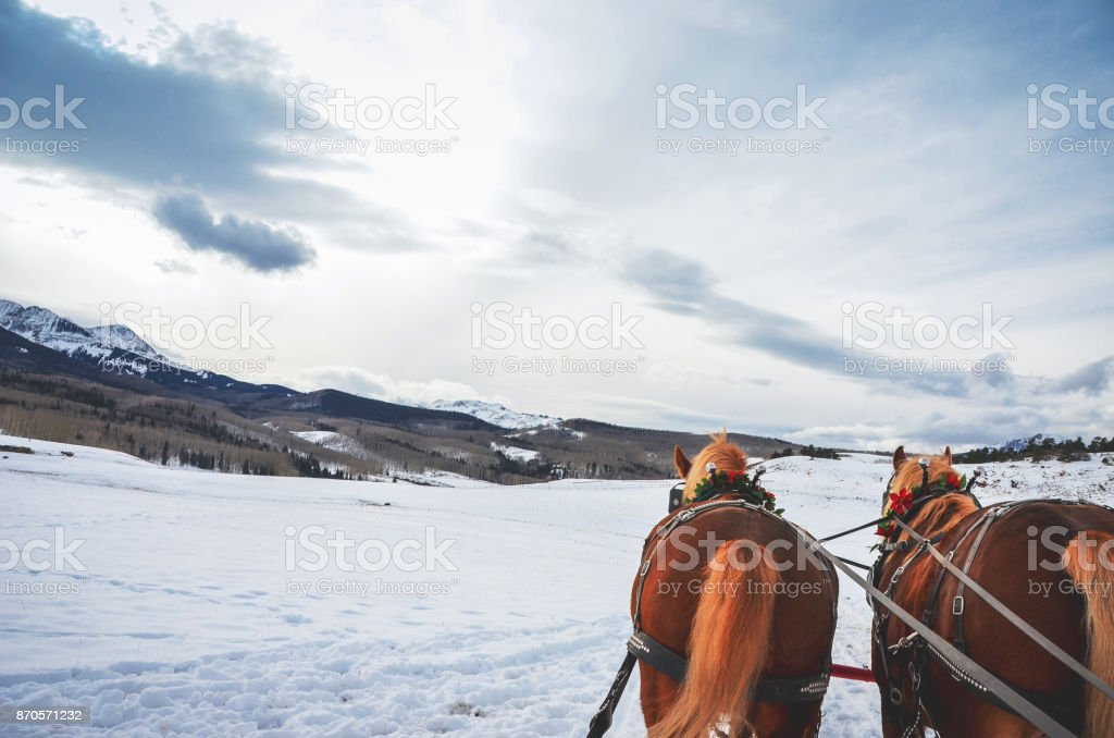 Traditional horse carriage sleigh ride stock photo