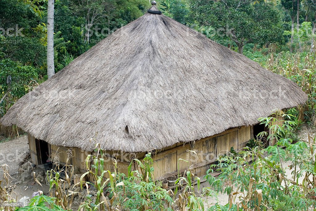 Traditional house in Timor Leste royalty-free stock photo