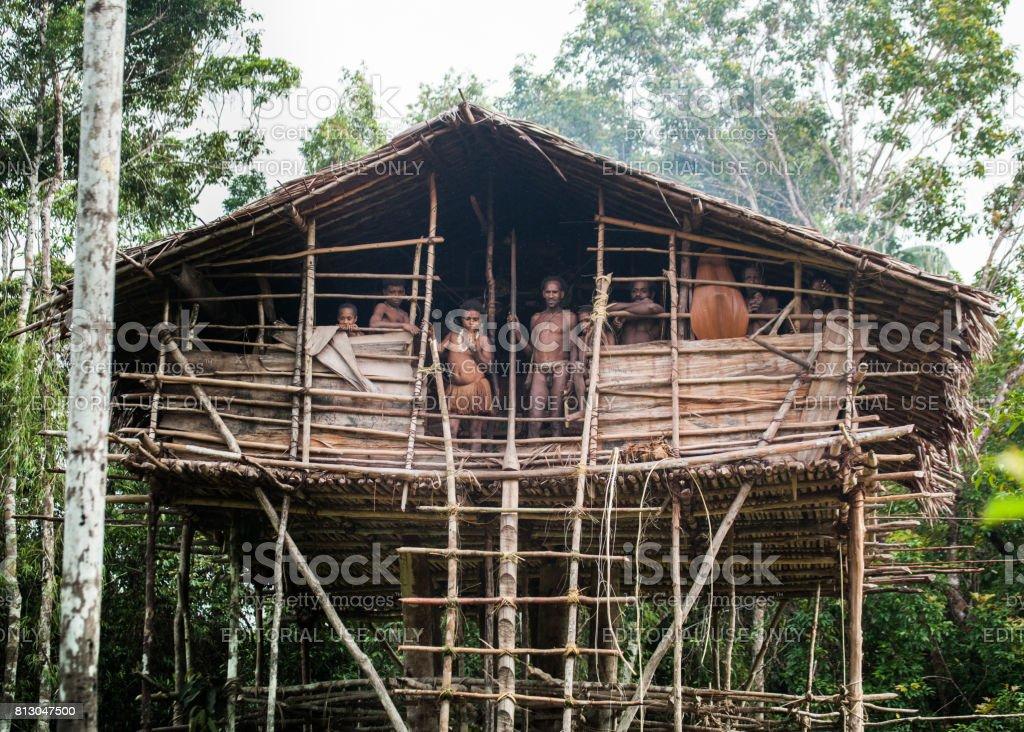 Traditional house Korowai tribe. Tribe of Korowai (Kombai , Kolufo). stock photo