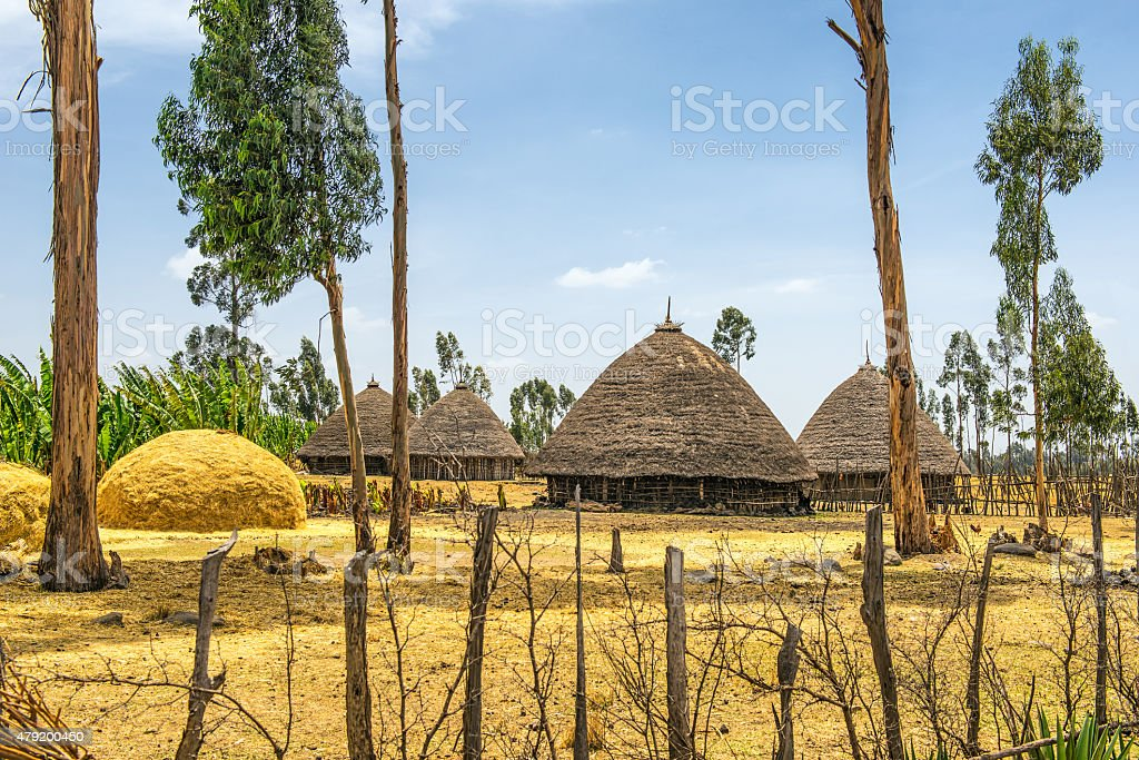 Traditional houses in  Ethiopia, Africa stock photo