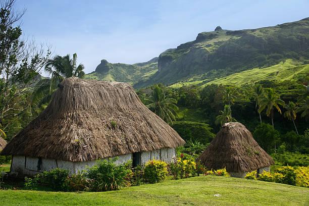 traditional houses of navala village, viti levu, fiji - fiji stock photos and pictures