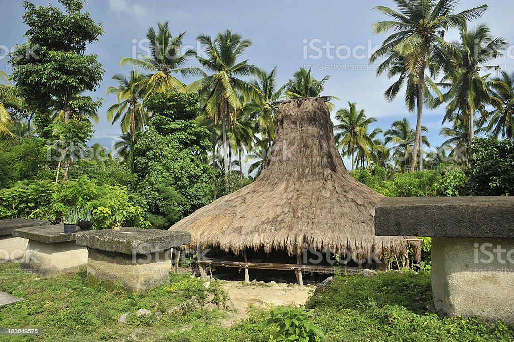 Traditional Huts and Stone Tombs, Indonesia royalty-free stock photo