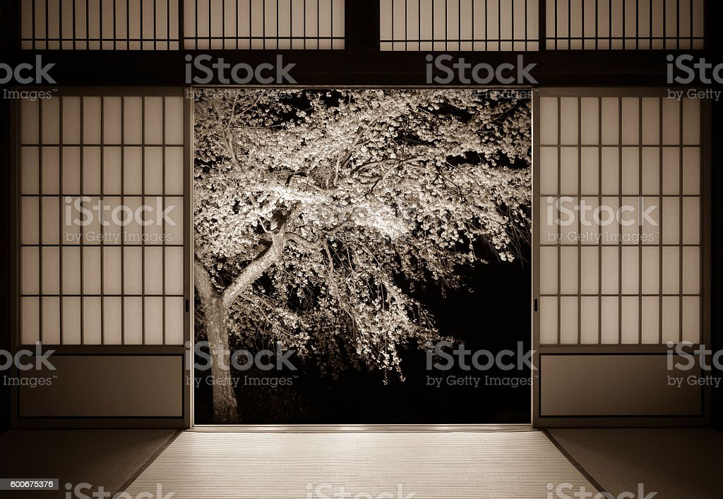 Traditional Japanese background of doors and sakura with aged look stock photo