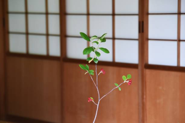 Traditional Japanese house – zdjęcie