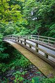 Traditional japanese wooden bridge in botanical garden, Nikko, Japan
