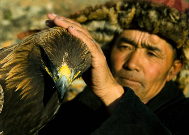 traditionelle kasachen mann mit eagle für die falknerei - rawpixel stock-fotos und bilder