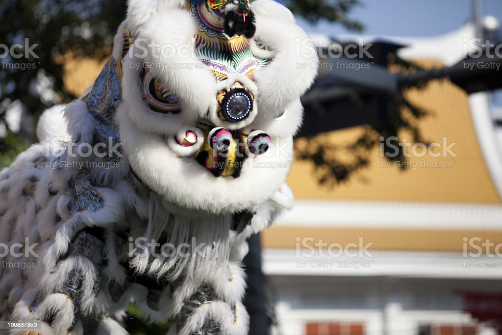 Traditional lion dance during Chinese New Year royalty-free stock photo