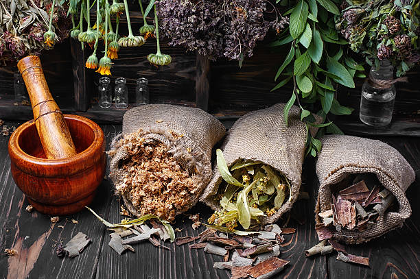 traditional medicinal herb stock photo