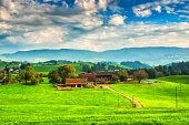 Traditional Mountain Houses,  Farms on Green Fields, Switzerland, European Alps. Beautiful blue sky over the green field full of farm animals, farms and traditional mountain houses. Switzerland, European Alps.