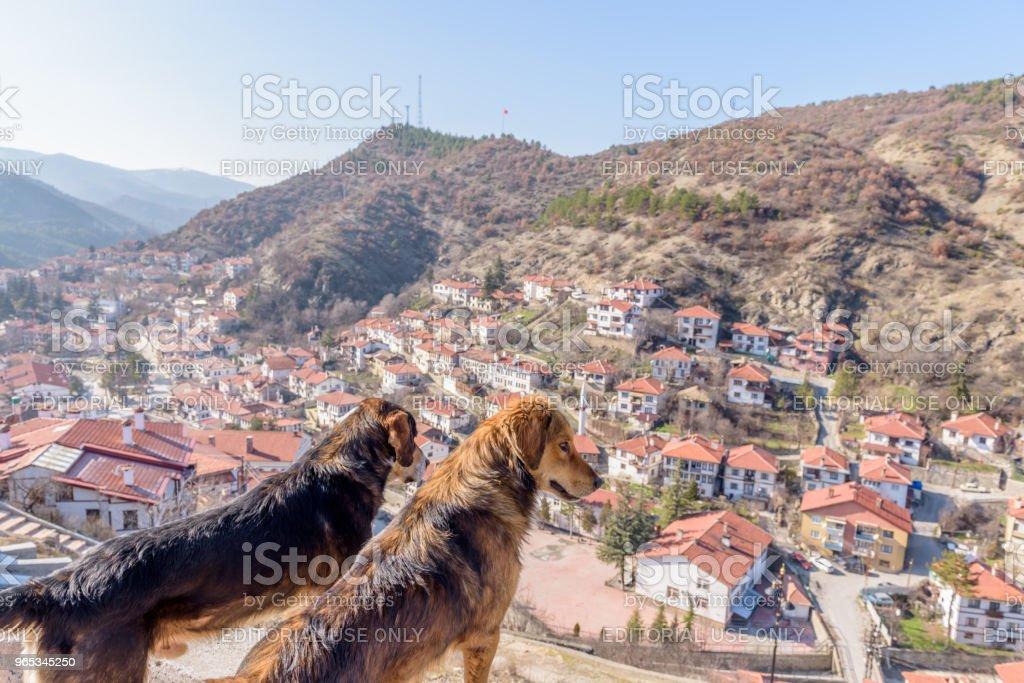 Traditional, old and historical Anatolia houses in Tarakli zbiór zdjęć royalty-free