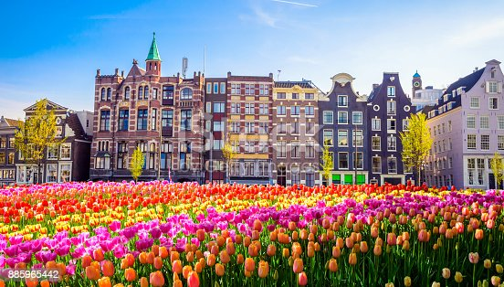 istock Traditional old buildings and tulips in Amsterdam, Netherlands 885965442