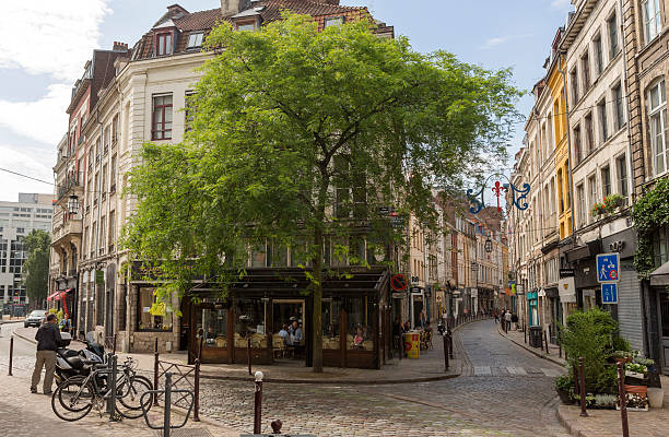 Traditional old buildings by street at lille france – Foto