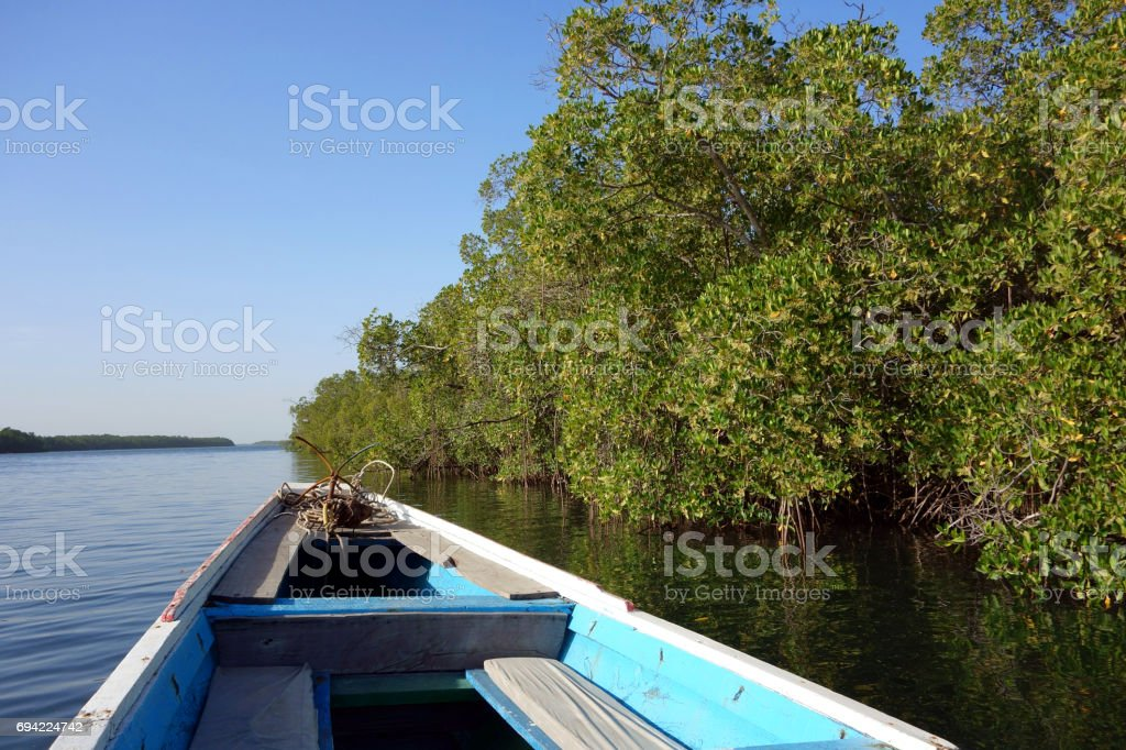 Traditional pirogue in the Sine Saloum Delta, Senegal stock photo