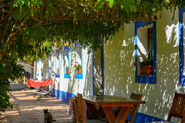 traditional portuguese house in a village, alentejo portugal - setubal imagens e fotografias de stock