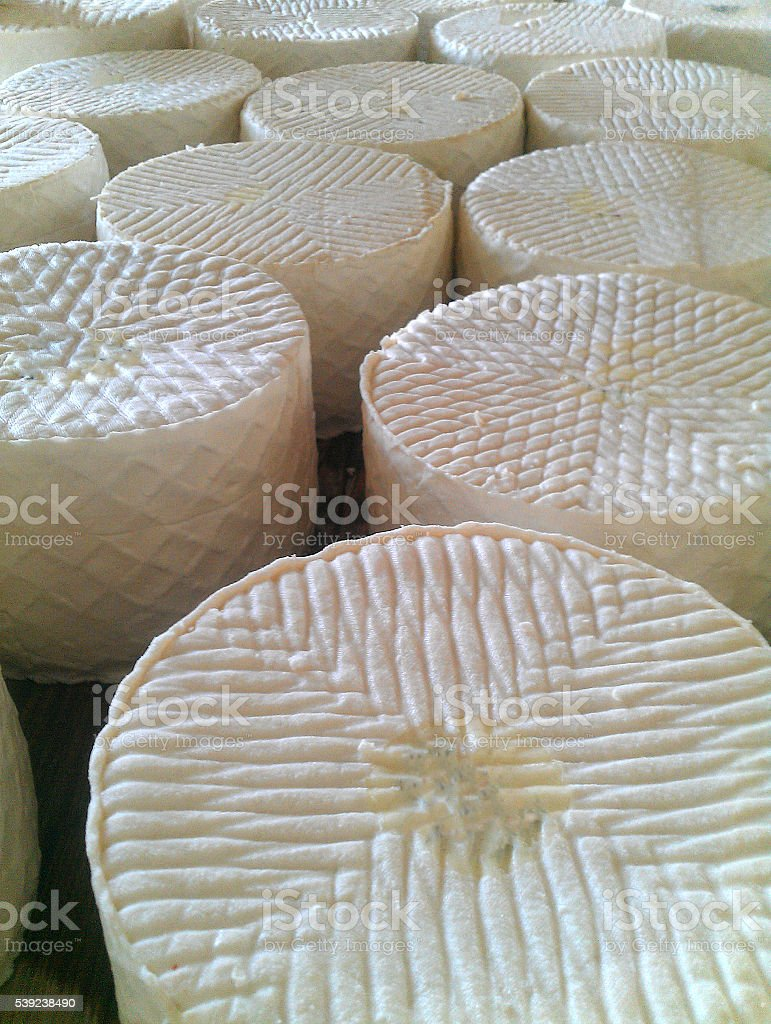 Traditional spain cheese in the organic shop royalty-free stock photo