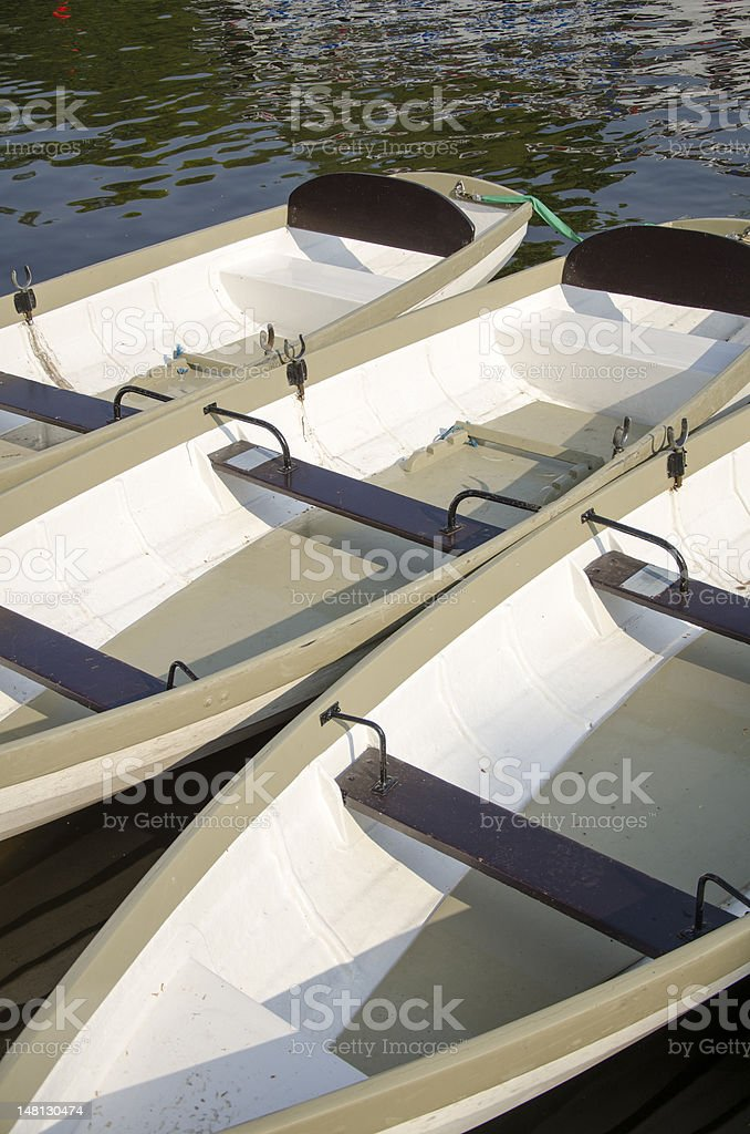 Traditional Styled Rowing Boats on River Dee royalty-free stock photo