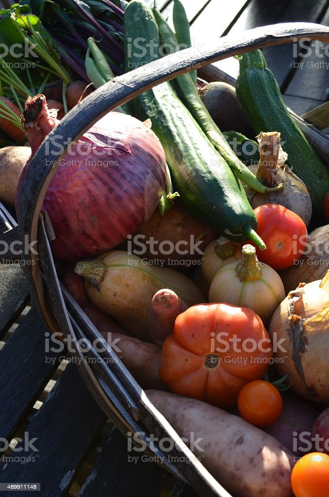 Traditional Sussex trug basket. stock photo