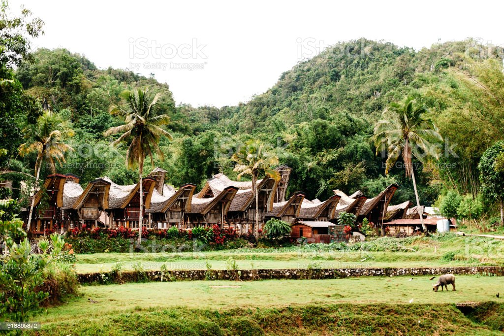 Traditional Tana Toraja village, tongkonan houses and buildings. Kete Kesu, Rantepao, Sulawesi, Indonesia stock photo