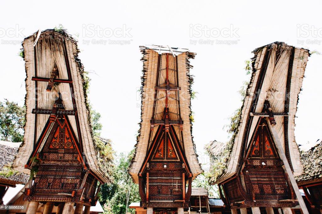 Traditional torajan building tongkonan with carving and boat-shaped roofs. Tana Toraja, Rantepao, Sulawesi, Indonesia. Wide angle. stock photo