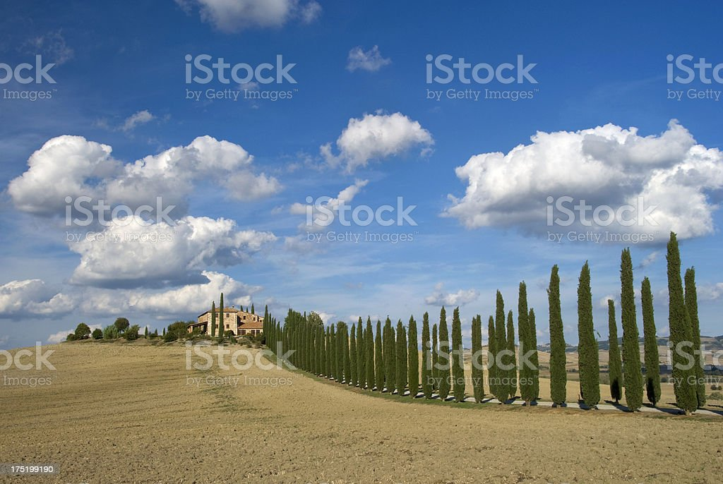 Traditional Tuscan Landscape royalty-free stock photo