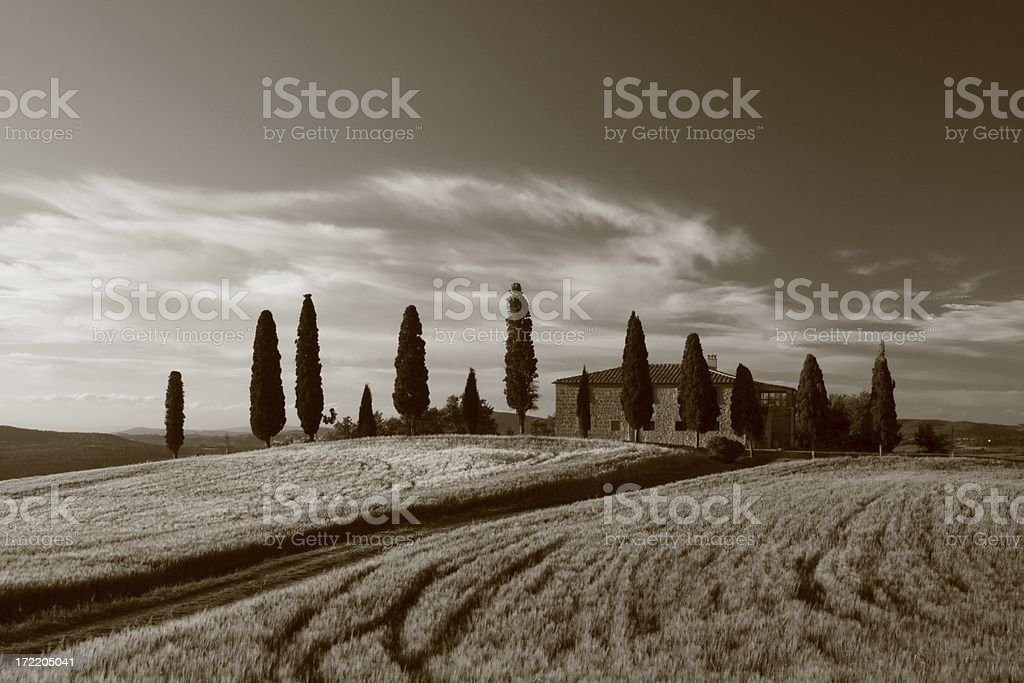 Traditional Tuscany Villa with Cypress royalty-free stock photo