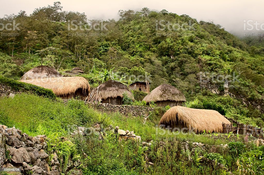 traditional village in Papua stock photo