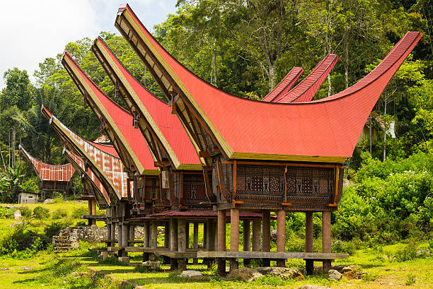 Traditional village, Tana Toraja Traditional village of residential buildings with decorated facade and boat shaped roofs. Tana Toraja, South Sulawesi, Indonesia. sulawesi stock pictures, royalty-free photos & images