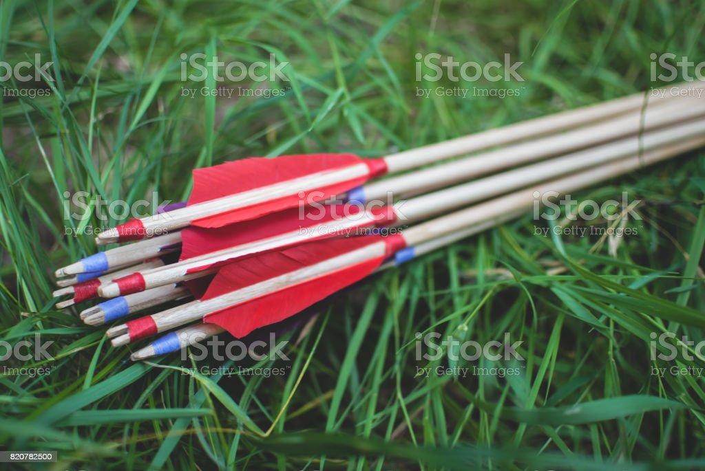 Flechas de madera tradicionales con plumas rojas, tendido sobre la hierba verde. - foto de stock