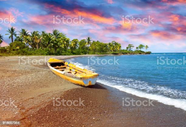 Traditional wooden fishing boat on sandy sea coast with palm tree picture id918667354?b=1&k=6&m=918667354&s=612x612&h=tjupgp3sxsajiswdw4zm2mgv3ycsbi25zyug966b2cs=