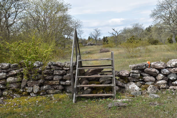 Traditional wooden stile crossing an old dry stone wall in spring season stock photo