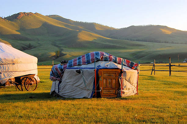 Traditional yurt in the Mongolian steppe stock photo
