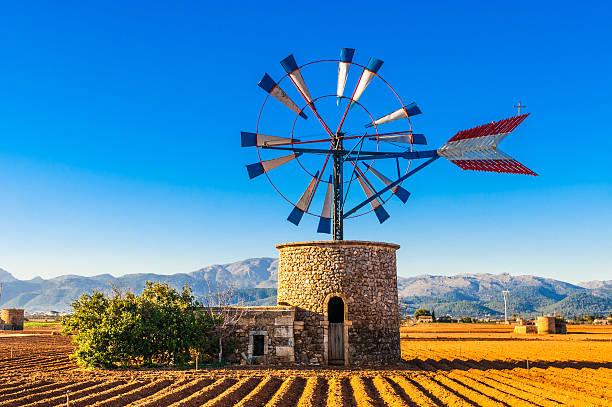 traditionelle windmühle auf mallorca - mallorca stock photos and pictures