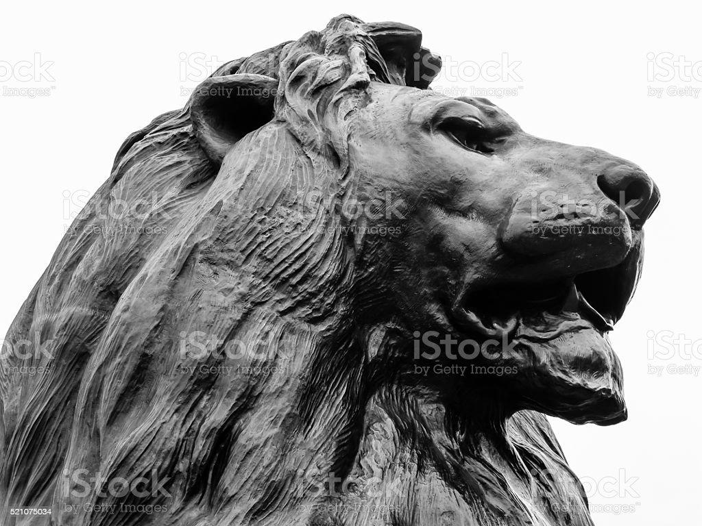 Trafalgar Square lion stock photo