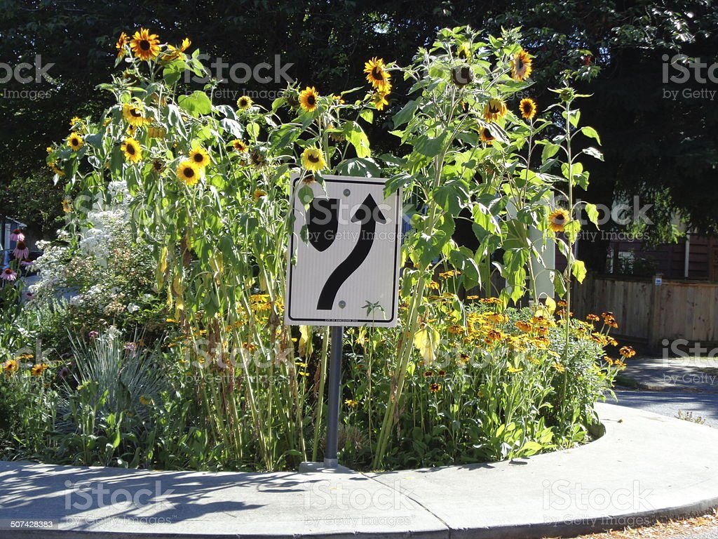 Traffic sign and sunflowers stock photo