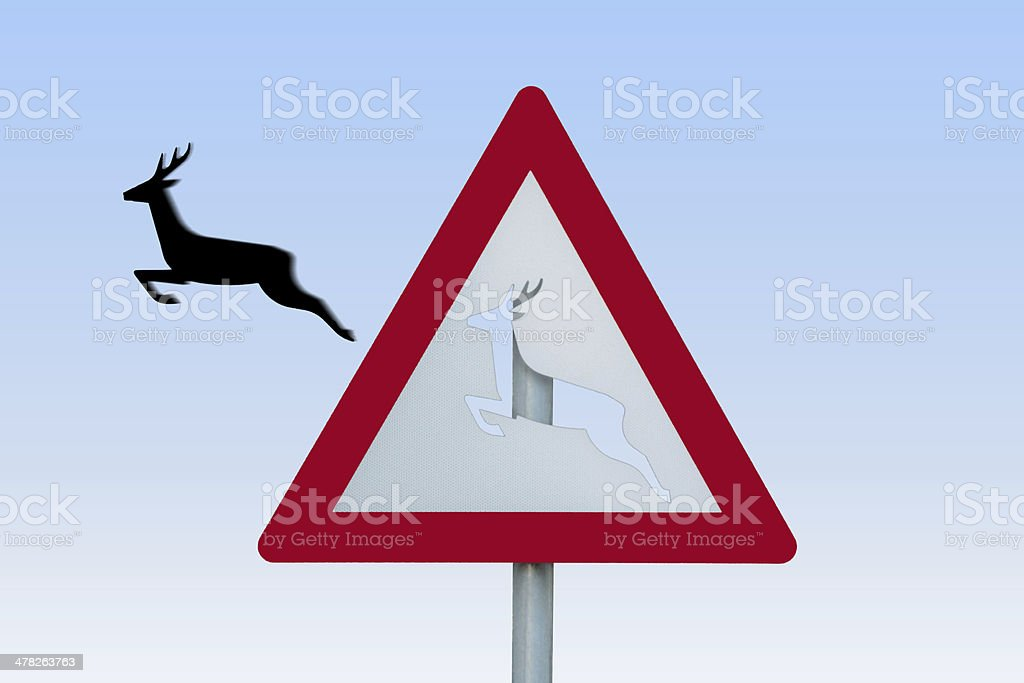 traffic sign with jumping deer stock photo