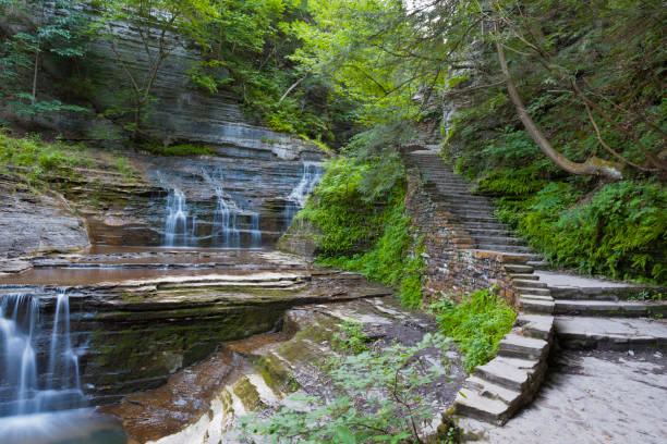 Trail and Cascades A stone stair follows a series of cascades.  Summer within the gorge of Buttermilk Falls Park. michael stephen wills waterfall stock pictures, royalty-free photos & images