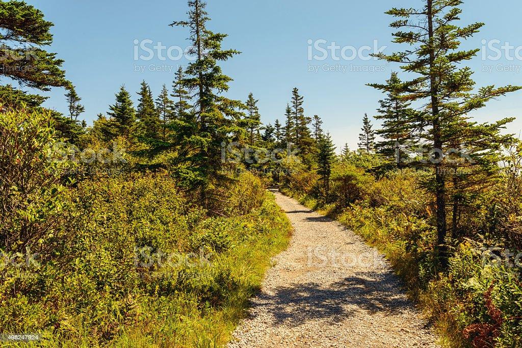 Trail at Keji Seaside stock photo