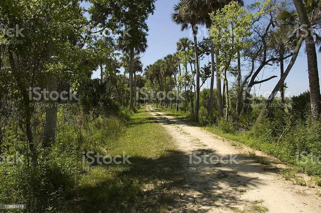 Trail at Park in Tittusville Florida stock photo