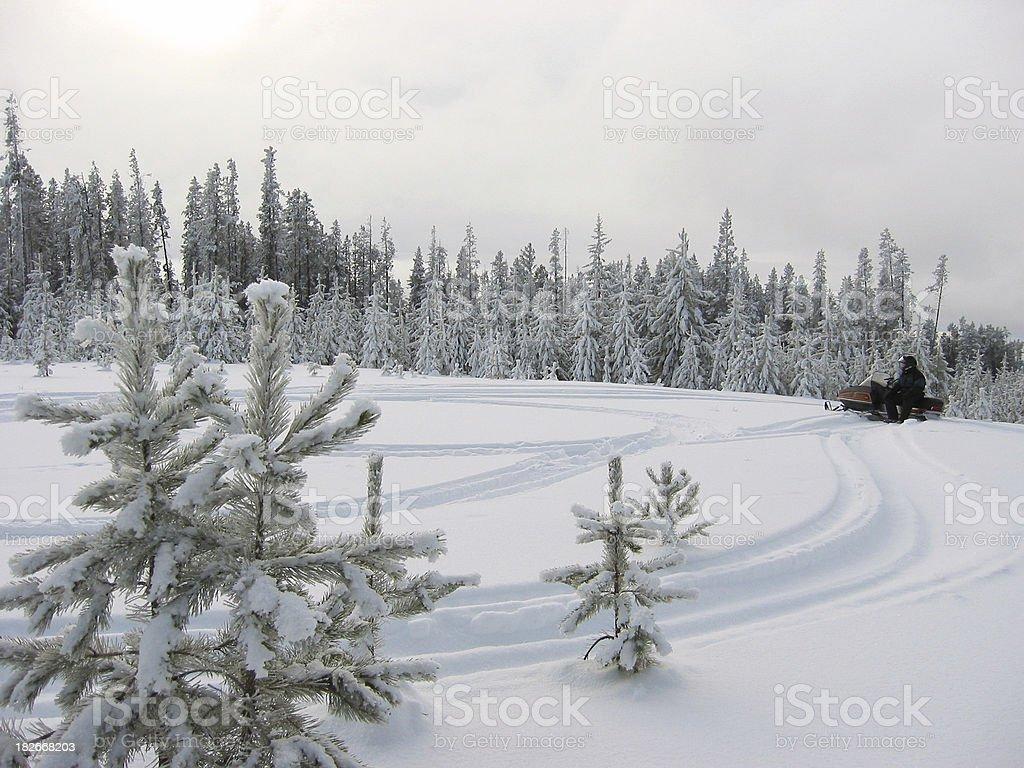 Trail Blazing royalty-free stock photo