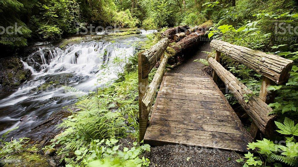 Trail, Gnat Creek royalty-free stock photo