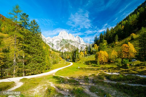 istock trail in Alps in Berchtesgaden National Park in Germany 1249401845