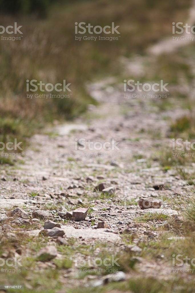 trail in Black Forest royalty-free stock photo