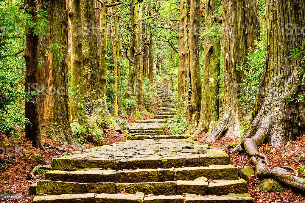 Trail in Japan stock photo