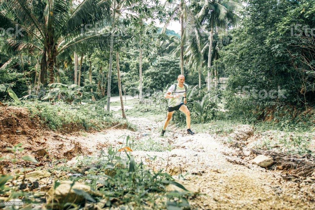 Trail in jungle stock photo