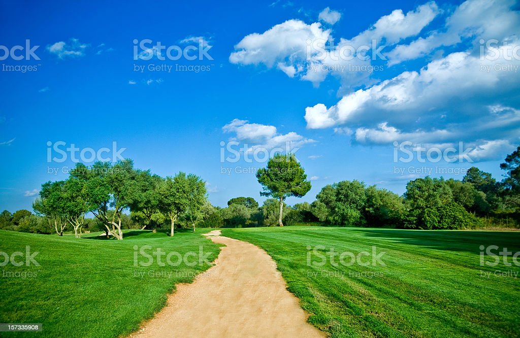 trail in the nature royalty-free stock photo