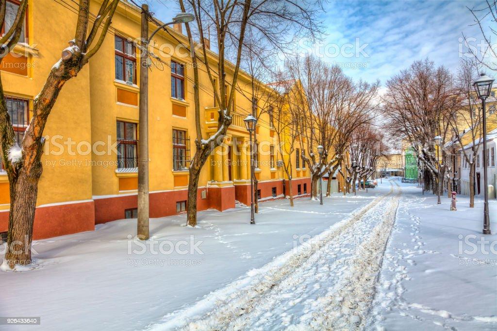 Spur im Schnee – Foto
